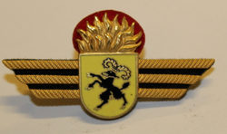 Badge ( Brustflügel ) Swiss fire dept. Schaffhausen