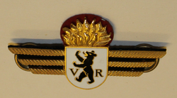 Badge ( Brustflügel ) Swiss fire dept. Appenzell Ausserrhoden