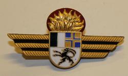 Badge ( Brustflügel ) Swiss fire dept. Graubünden