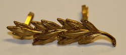 Swiss Rank insignia. Leaf