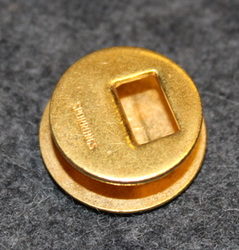 Unidentified danish lapel pin