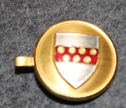 Danish coat of arms ( municipality? ) cap badge / pin