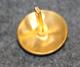 Tanskan Suojeluskuntakoulu, 20mm kullattu