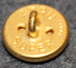 Payerne, Swiss municipality, 15mm, gilt