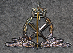 Luftforsvaret befal, förvaltningstjenste, Norwegian air force branch badge, Commandant, administration