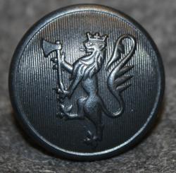 Norjan leijona, 24mm