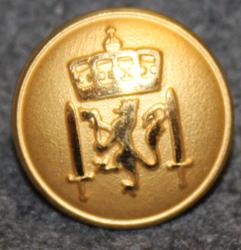Norjan armeija, 17mm, kullattu