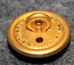 Smålands regemente I12, swedish military, 14mm, gilt