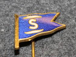 Salén Rederierna, Laivayhtiö