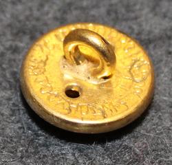 Skaraborgs län, Ruotsin lääni. 13mm, kullattu