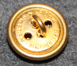 Älvsborgs län, Swedish County. 13mm, gilt