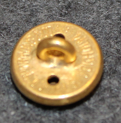 Västmanlands län, Swedish County. 14mm, old model, gilt