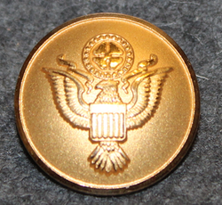 American Eagle 22mm gilt