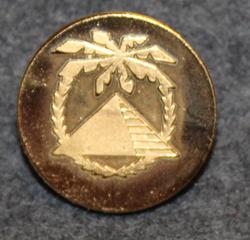 Kaffe AB Pyramiden, 22mm gilt