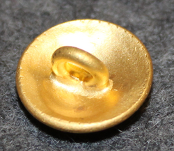 Kungliga Vattenfallsstyrelsen, Royal Swedish hydroelectric administration. 13,5mm gilt V2