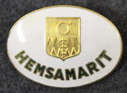 Hemsamarit Finspångs kommun, Kotisairaanhoitaja / kodinhoitaja.