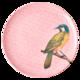 Melamiinilautanen lintu