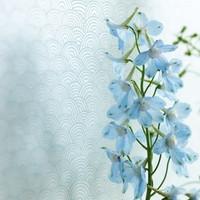 Tapetti 313031 Shanghai Bows Blue, vaaleansininen