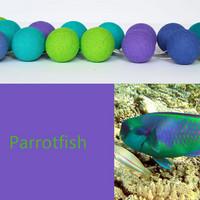 Pallovalot, Parrotfish, 35 palloa