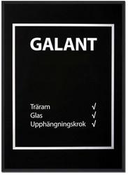 Kehys Galant Musta 50x70