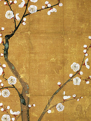 Minijuliste, Japanilainen Luumupuu