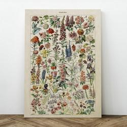 Plywood Print - Fleurs 30x40