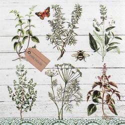 Servetti Floral Study 33x33cm