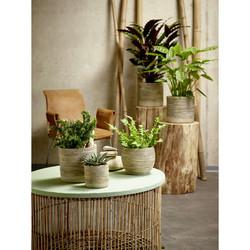 Ruukku Myanmar Bambu