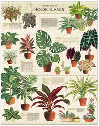 Palapeli Cavallini - Houseplants