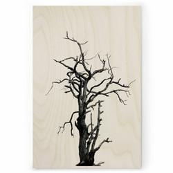 Plywood Print - Dead Wood 30x40