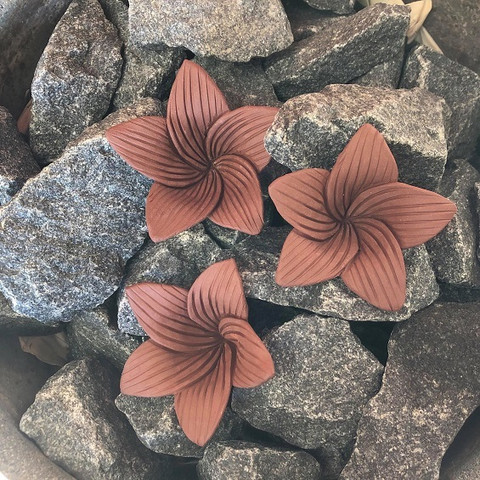 Kiuaskukka, lilja, ruskea (3kpl/pkt)