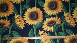 Auringonkukat, musta pohjaväri