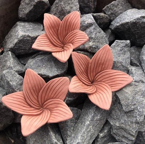 Kiuaskukka, lilja, vanha roosa (3kpl/pkt)
