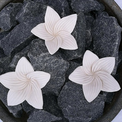 Kiuaskukka, lilja, luonnonvalkoinen (3kpl/pkt)