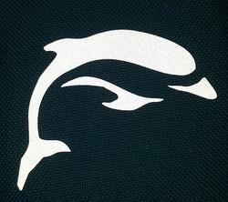 Silityskuva Delfiini