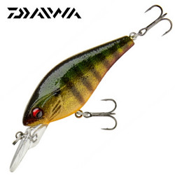 Gold Perch 6cm