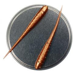 Annelida 77mm 5kpl väri: Pronssi