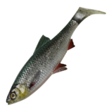 4D River Roach 18cm/70g