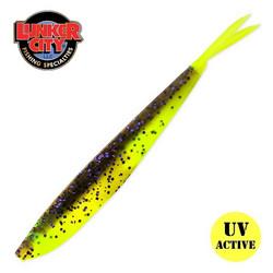 #284 Big Fish CT 4